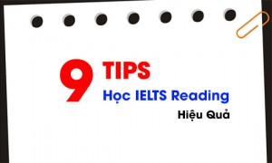9 Tips học IELTS Reading hiệu quả