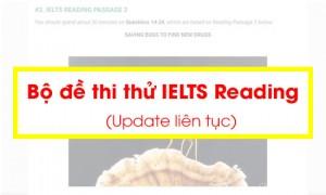 Chi tiết cách Học & Thi IELTS Reading theo từng dạng bài - Aland IELTS