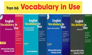 Trọn bộ tài liệu English Vocabulary in Use - Aland IELTS