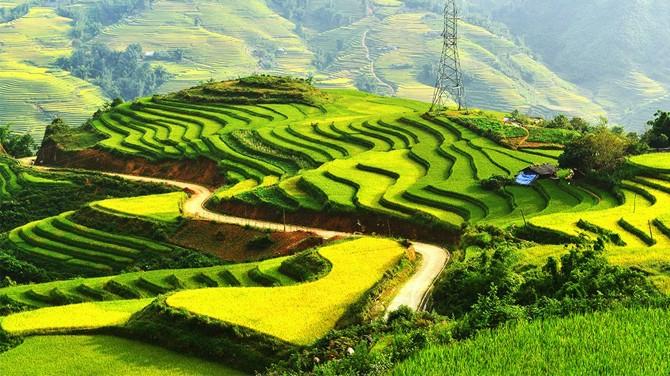 bài giới thiệu về Việt Namtuyệt vời