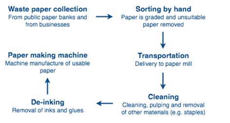 bài mẫu dạng process (quy trình)