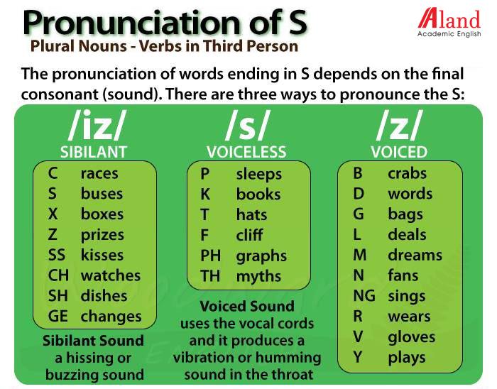 cách phát âm s và es trong tiếng Anh 1